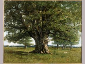 """Gustave Courbet, """"Le chêne de Flagey"""", 1864 ©DR"""