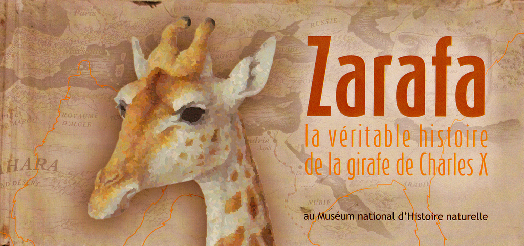 zarafa la girafe film