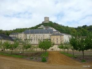 Le château de la Roche-Guyon vu du potager ©db