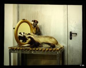 """Skeletons in the closets"", Klaus Pichler © db"