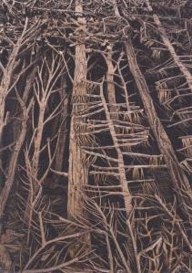 """Éva Jospin, """"Forêt"""" 2013 © Raphaël Lugassy"""