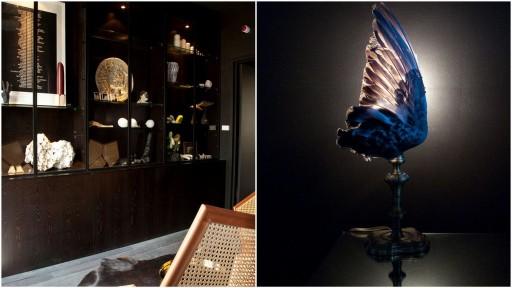 """Site 142 : cabinet de curiosité et lampe """"aile""""© Martine Houghton/ Montage db"""